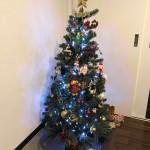 世界に1つだけのクリスマスツリー♪